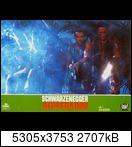 Хищник / Predator (Арнольд Шварценеггер / Arnold Schwarzenegger, 1987) 15955796035_93a02f906m2z5b
