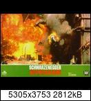 Хищник / Predator (Арнольд Шварценеггер / Arnold Schwarzenegger, 1987) 15955797765_b5f5e3014vgb3g