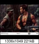 Хищник / Predator (Арнольд Шварценеггер / Arnold Schwarzenegger, 1987) 21197_2vbbqw