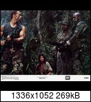 Хищник / Predator (Арнольд Шварценеггер / Arnold Schwarzenegger, 1987) 21197_44ulaa