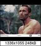Хищник / Predator (Арнольд Шварценеггер / Arnold Schwarzenegger, 1987) 21197orbg7