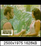 Хищник / Predator (Арнольд Шварценеггер / Arnold Schwarzenegger, 1987) - Страница 2 94591_16_122_252lomyakn