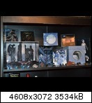 dsc_034201kbf.jpg