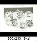 image-580634-galleryvfvin7.jpg