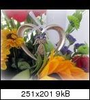 [Bild: images230sks.jpg]