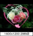 [Bild: love-roses-1dscf.jpg]