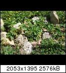 [Bild: p5230387lpsiy.jpg]