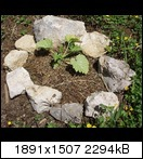 [Bild: p5230393ezs2w.jpg]
