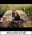 p6080026orsfm.jpg