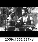 Хищник / Predator (Арнольд Шварценеггер / Arnold Schwarzenegger, 1987) Predator575ie98