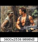 Хищник / Predator (Арнольд Шварценеггер / Arnold Schwarzenegger, 1987) Predator58qbd0w