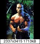 Хищник / Predator (Арнольд Шварценеггер / Arnold Schwarzenegger, 1987) Predator800wzcp
