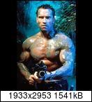 Хищник / Predator (Арнольд Шварценеггер / Arnold Schwarzenegger, 1987) Predator8156y1o