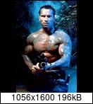 Хищник / Predator (Арнольд Шварценеггер / Arnold Schwarzenegger, 1987) Predator83a6rl42