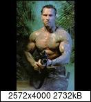 Хищник / Predator (Арнольд Шварценеггер / Arnold Schwarzenegger, 1987) Predator83b9gz36