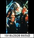 Хищник / Predator (Арнольд Шварценеггер / Arnold Schwarzenegger, 1987) Predator84ctjkl