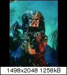 Хищник / Predator (Арнольд Шварценеггер / Arnold Schwarzenegger, 1987) Predator90lykx4