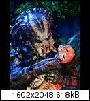 Хищник / Predator (Арнольд Шварценеггер / Arnold Schwarzenegger, 1987) Predator91b6ejwn