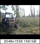 snc00486q3yzl.jpg