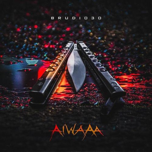 Brudi030 - AIWAAA (2019)
