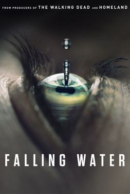 Falling Water - Stagione 1 (2016) (Completa) DLMux ITA ENG MP3 Avi