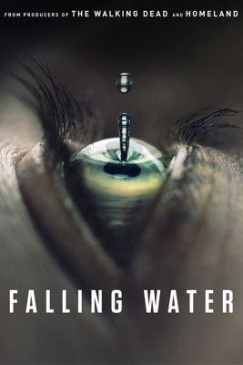 Falling Water - Stagione 1 (2016) (1/10) DLMux ITA ENG MP3 Avi