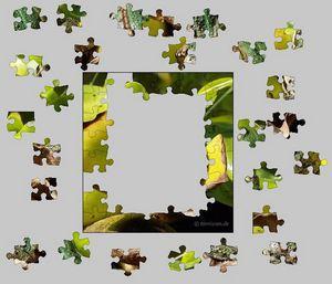 Zum Puzzle-Generator