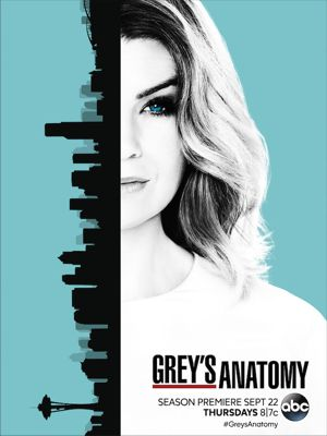 Grey's Anatomy - Stagione 13 (2016) (Completa) DLMux ITA MP3 Avi