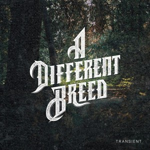 A Different Breed - Transient (2016)