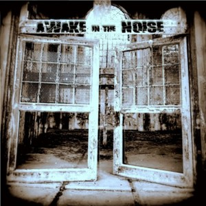 Awake In The Noise - We Are Noise (2016)