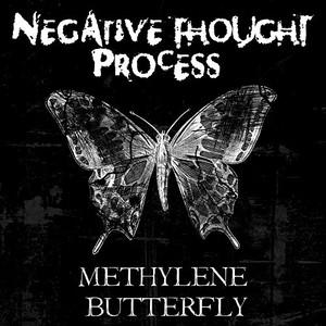Negative Thought Process - Methylene Butterfly (2016)