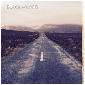 Black Woods - Landscapes (2016)
