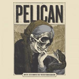 """""""Pelican"""