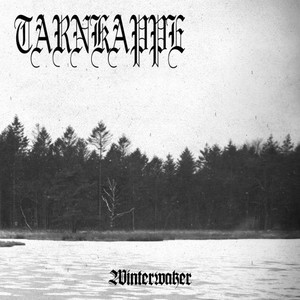Tarnkappe – Winterwaker (2016) Album (MP3 320 Kbps)