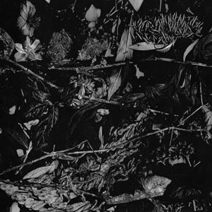 Turia – Dede Kondre (2017) (MP3 320 Kbps)