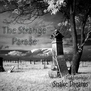 Todd Perkins' Snake Dreams - The Strange Parade (2017)