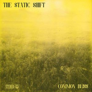The Static Shift - Common Bliss (2017)