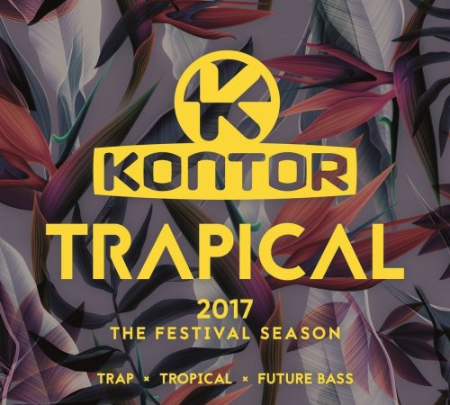 Coco Beach Ibiza Vol.6 (By Danielle Diaz), Buddhatronic The Compilation Vol.2, Drum And Bass Arena 2017, Kontor Trapical 2017 The Festival Season