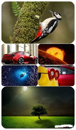 download Beautiful.Mixed.Wallpapers.Pack.614