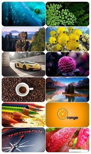 download Beautiful.Mixed.Wallpapers.Pack.668