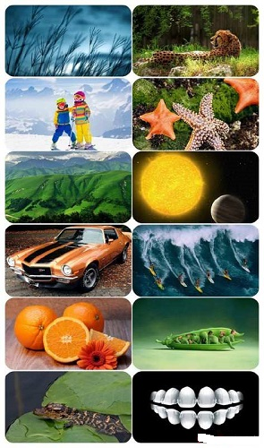 download Beautiful.Mixed.Wallpapers.Pack.673
