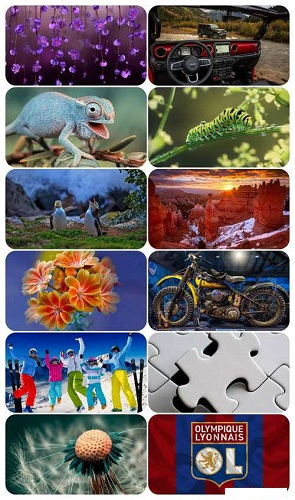 download Beautiful Mixed Wallpapers Pack 684