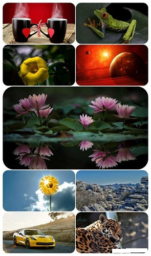 download Beautiful Mixed Wallpapers Pack 688