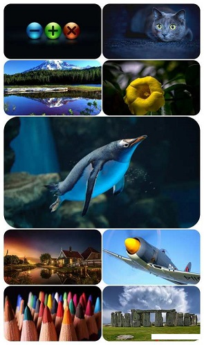 download Beautiful Mixed Wallpapers Pack 696