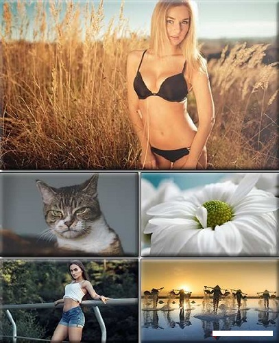download LIFEstyle News Mix Wallpapers Part (1373)