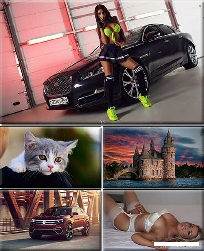 LIFEstyle News Mix Wallpapers Part (1376)