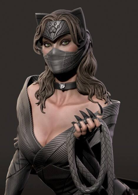 Premium Collectibles : Catwoman - Page 3 16996076_182413295447pojo0