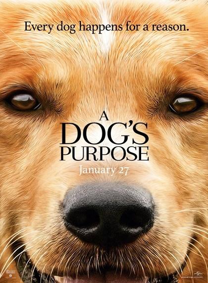 Can Dostum - A Dog's Purpose - 2017 - BRRip - Türkçe Dublaj