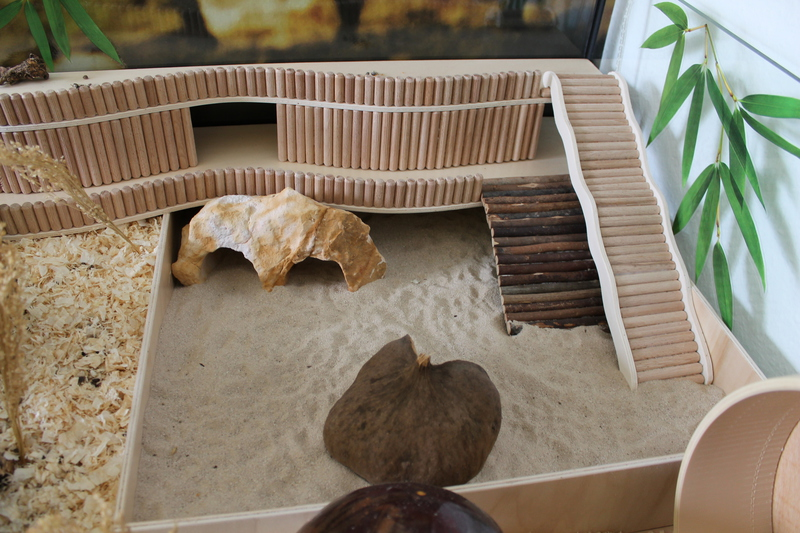 aquarium 150x80x60 cm aquarium wg mit robo und katzenb r gehegevorstellung. Black Bedroom Furniture Sets. Home Design Ideas