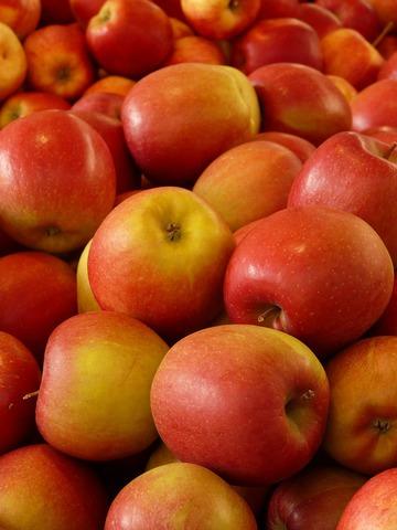 Apfelwein